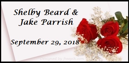 Beard Wedding Registry | The Canopy