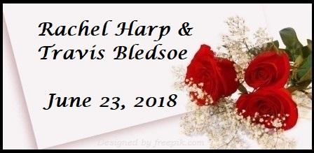 Harp Wedding Registry | The Canopy