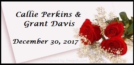 Perkins Registry