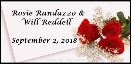 Randazzo Wedding Registry | The Canopy