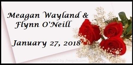 Wayland O'Neill Registry | The Canopy